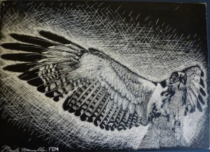 Hawk scratch board